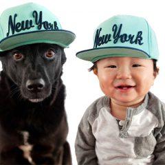 Cachorros e Bebês!