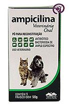 Imagem Ampicilina Oral 50g