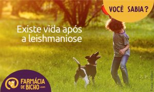 vida-apos-leishmaniose-visceral-canina