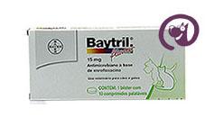 Imagem Baytril Flavour 15mg 10 comp. Antibiótico Cães e Gatos