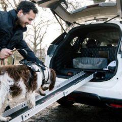 Nissan lança X-Trail especial para cachorros