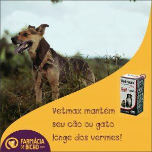 vetmax-vermifugo-oral