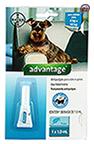 Imagem Advantage Antipulgas e Carrapatos Cães 4 a 10kg