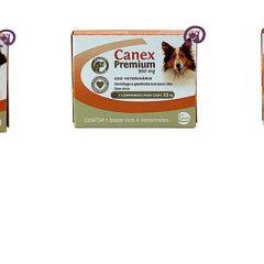 Canex Premium – O vermífugo que protege seu cão por completo