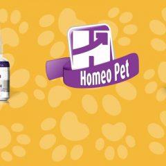 Conheça a Homeo Pet – homeopatia para cães e gatos!