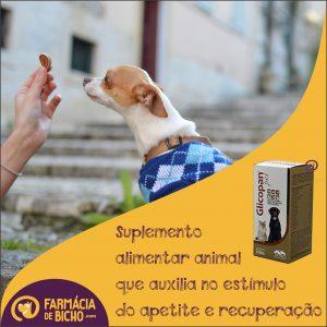 glicopan-pet-suplemento