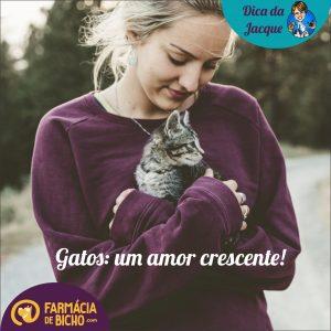 gatos-um-amor-crescente