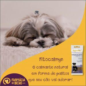 fitocalmyn-organnact-calmante-natural-para-cachorros
